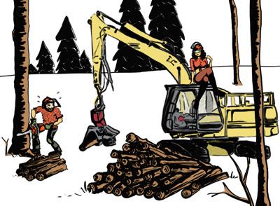 illustration association anciens élèves lycée forestier saint amans soult  <p style=