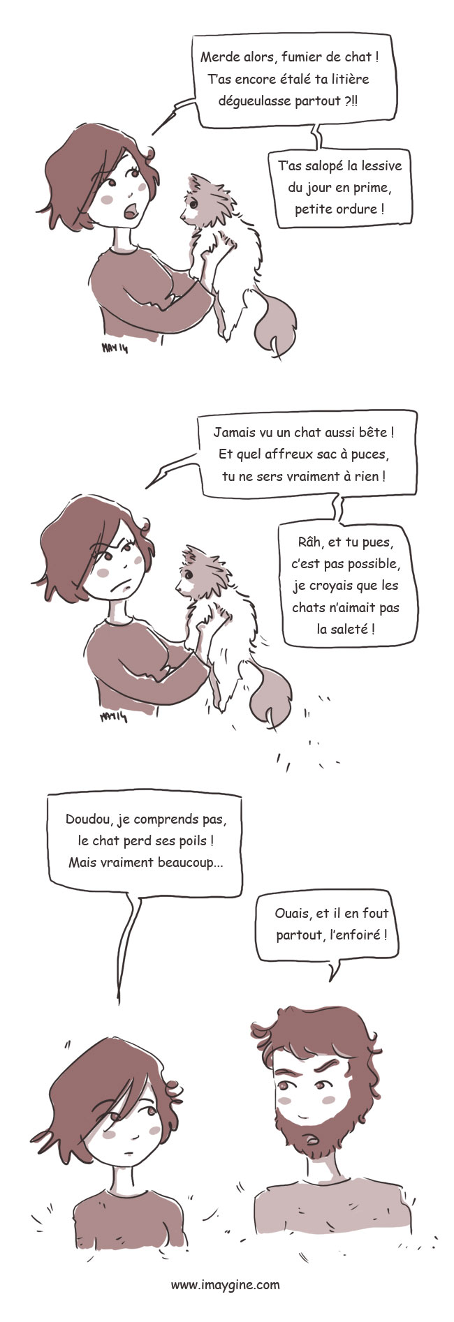 maltraitance animaux chat