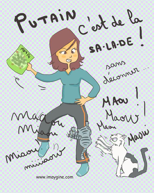 chat nourriture