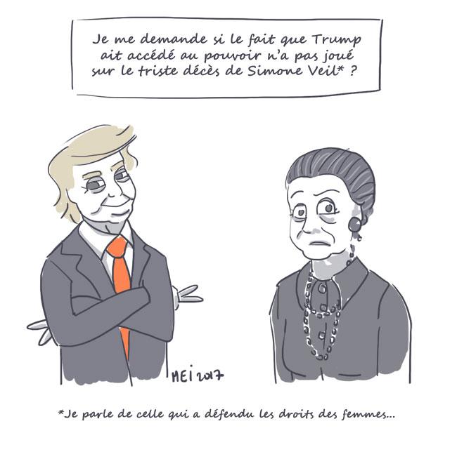 trump-veil