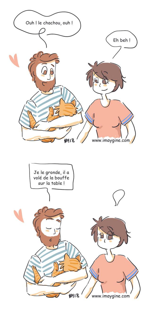 chat-dans-les-bras